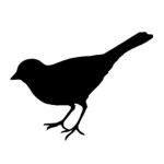 icon-bird
